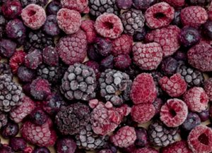 sydney food photographer test shoot berries