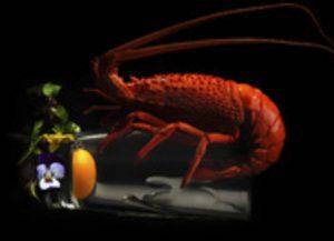 Awarded food Photography